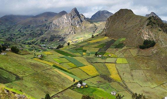 Rancharbeit Ecuador