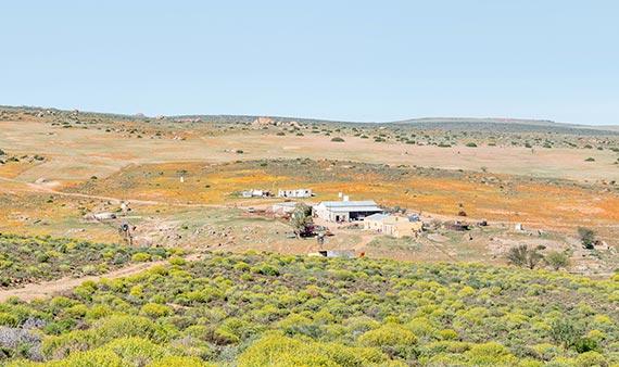 Rancharbeit in Südafrika