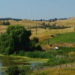 Programm: Rancharbeit in Kanada